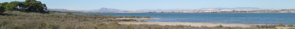 Torrevieja salt lake